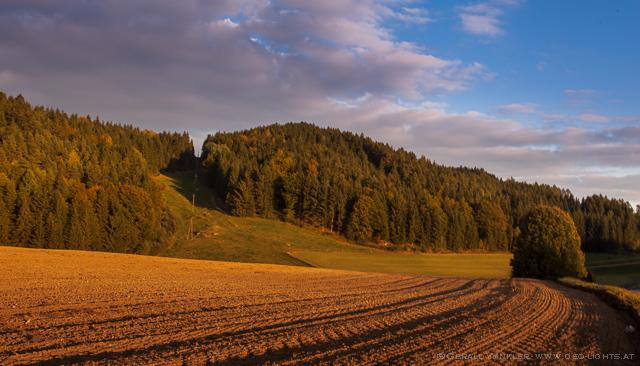 Herbst Waldviertel