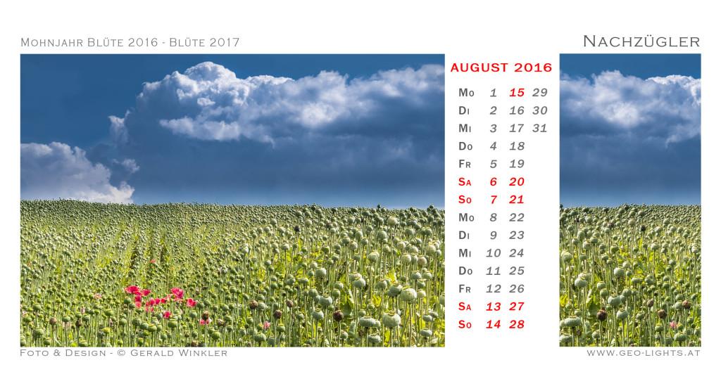1608-0I-Kalender-214x109-Nachzuegler