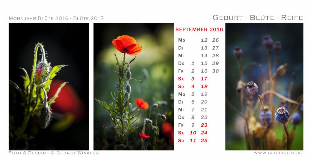 1609-0G-Kalender-214x109-GeburtBlueteReife