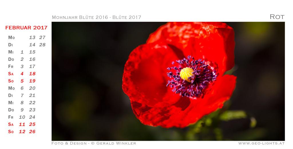 1702-0H-Kalender-214x109-Blutro-newt