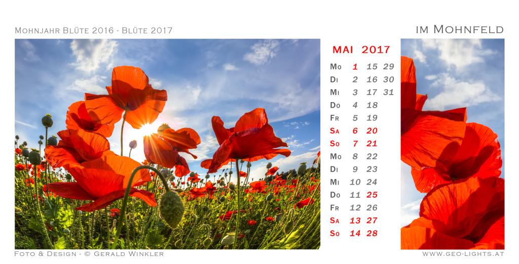 1705-0K-Kalender-214x109-imMohnfeld