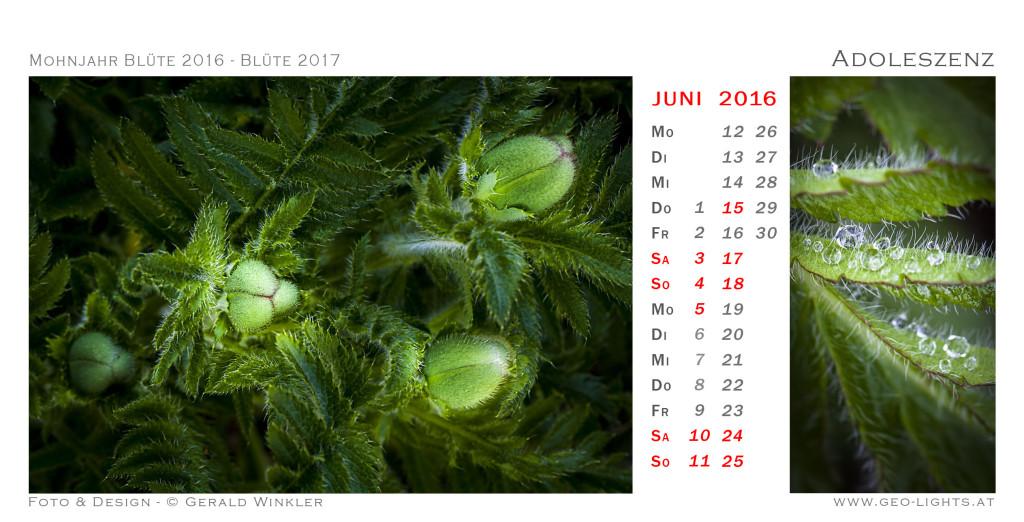 1706-0J-Kalender-214x109-Adoleszenz
